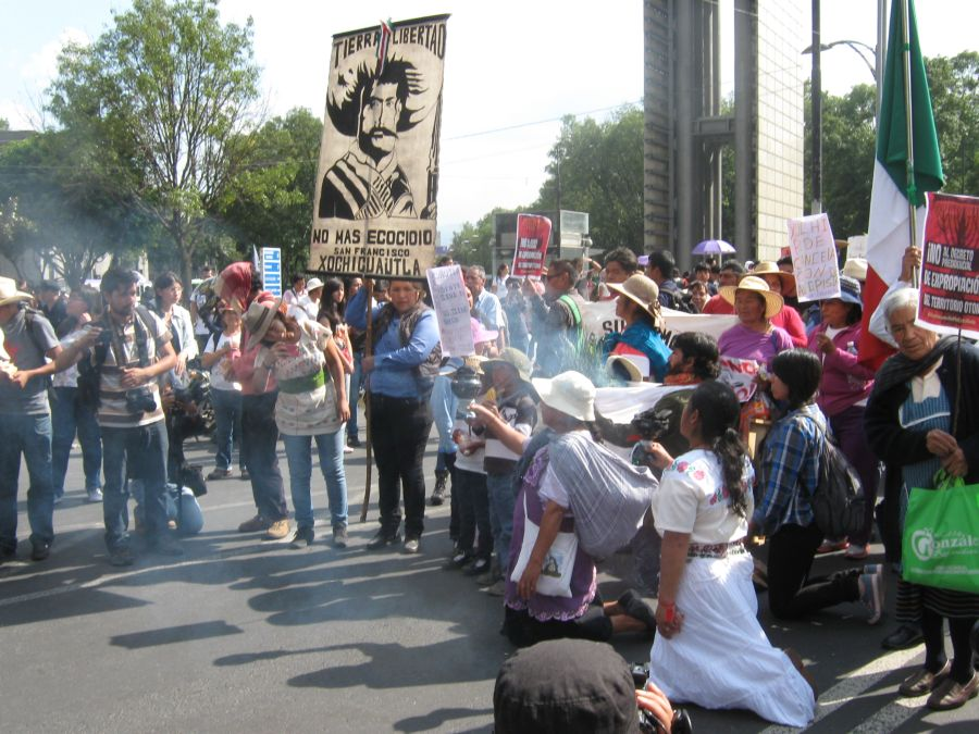 DF: Xochicuautla and Ostula Solidarity March