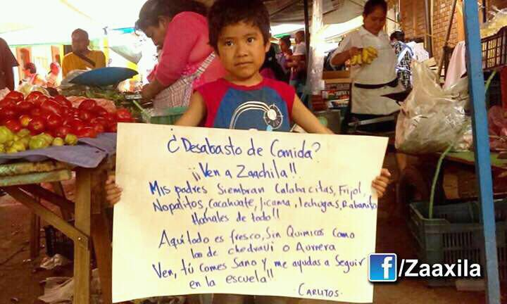 """Food shortage? Come to Zaachila! My parents grow squash, beans, nopal, peanuts, jicama, lettuce, radishes. Here everything is fresh, without chemicals, not like in Chedraui or Aurrera. Come, you eat healthy and help me stay in school! - Carlitos"""