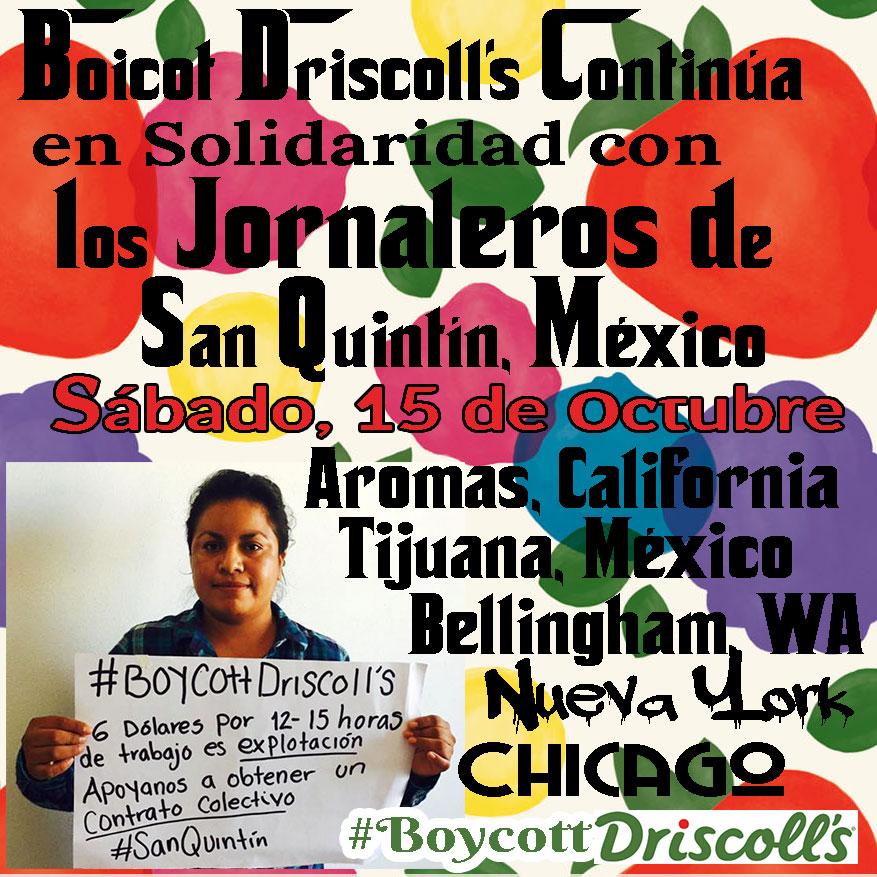 Boicot Driscoll's 15 de octubre 2016