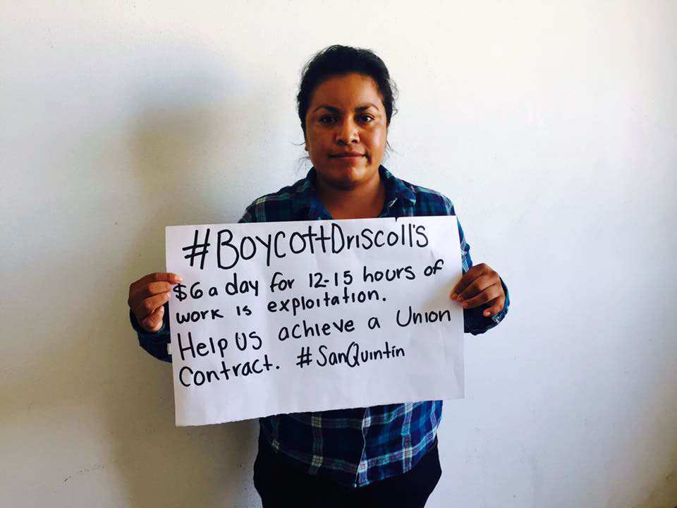 We Clarify and Reiterate the Driscoll's Boycott is in Full Force