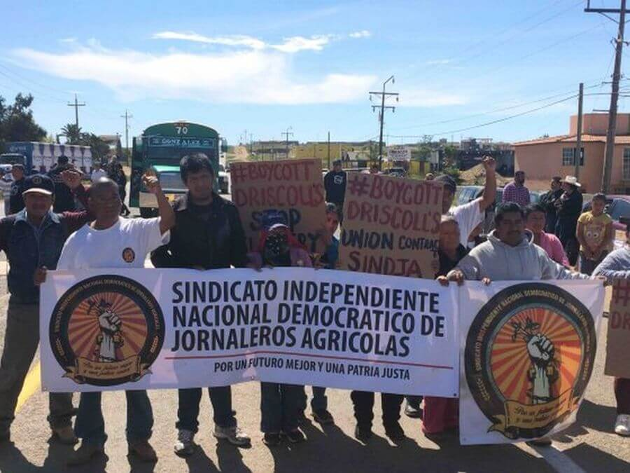 San Quintín farm workers take demands to Mexico City